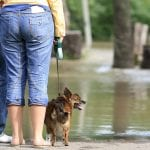 Water Damage - Pinellas Water Damage